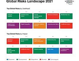 Relatório de Riscos Globais, publicado em 2021 pelo Fórum Econômico Mundial